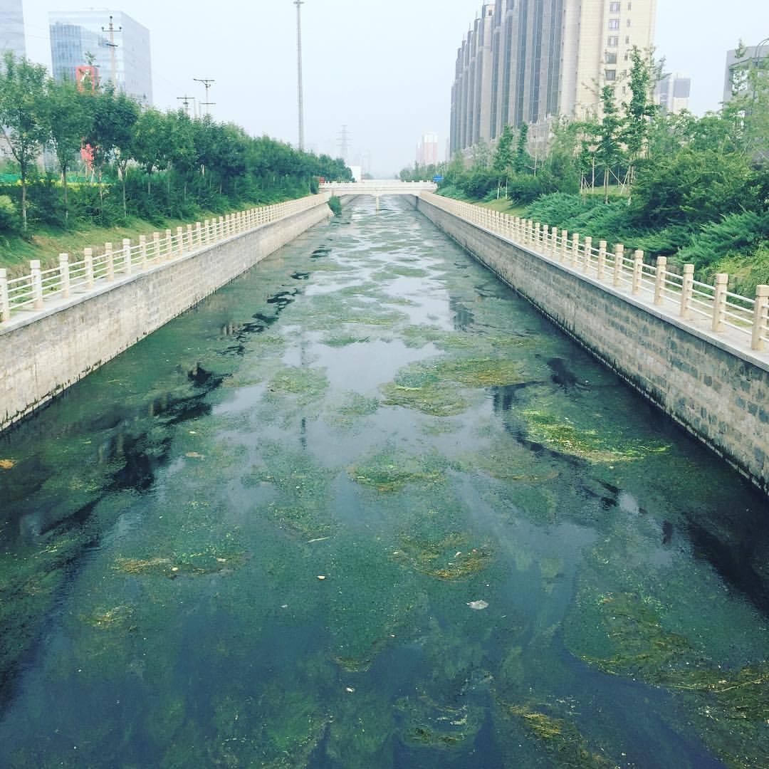 Learning Humility Beneath Beijing's SummerSun